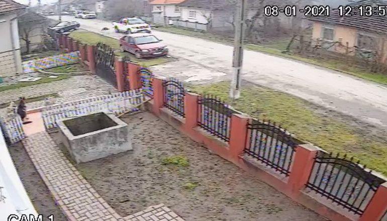 Un bărbat a lovit intenționat cu mașina un câine! Momentul a fost filmat