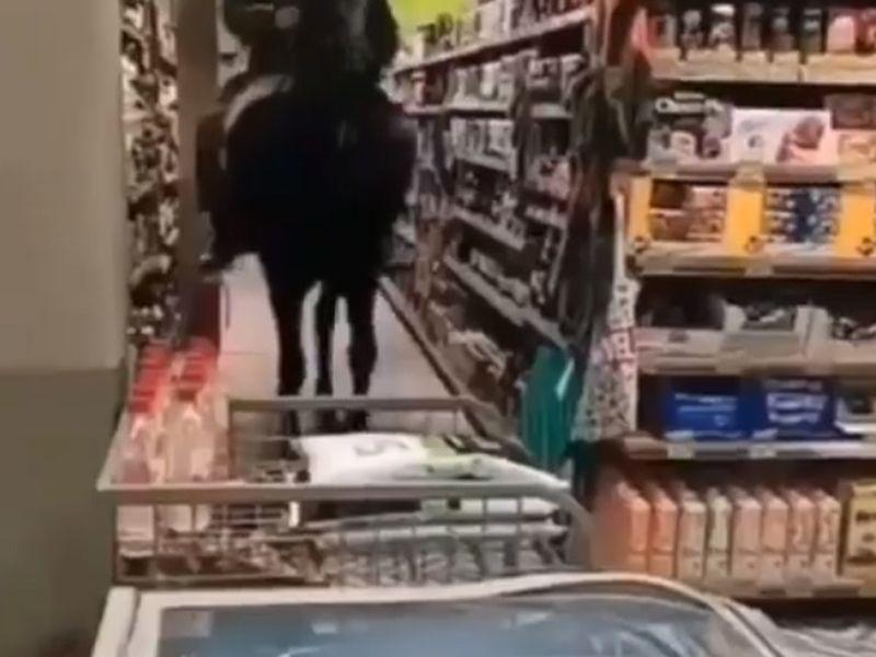 Un tânăr și-a făcut cumpărăturile pe un cal. Imaginile au ajuns virale