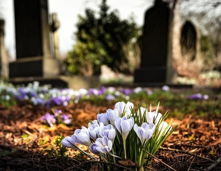 cimitir-2-jpg.jpg