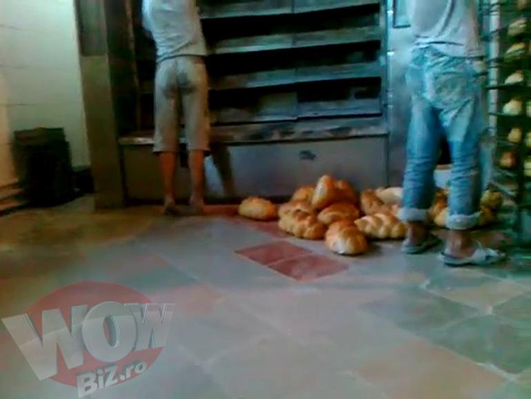 VIDEO Uite cum depoziteaza muncitorii astia din Vaslui painea proaspat scoasa din cuptor - Unul din ei e ud rau pe fund - O sa iti fie scarba sa mai mananci
