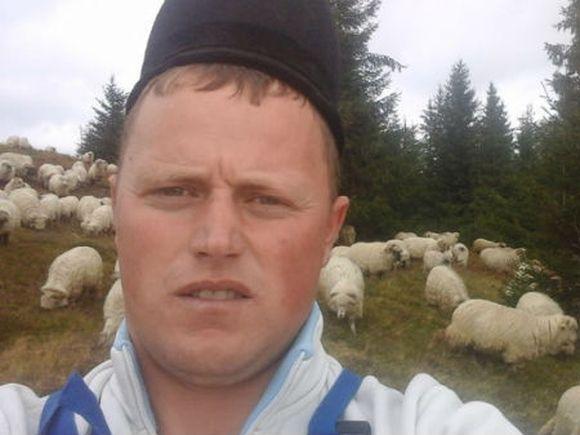 Ghinion pentru Ghita Ciobanul! Are legatura cu oile lui! Ce i s-a intamplat?