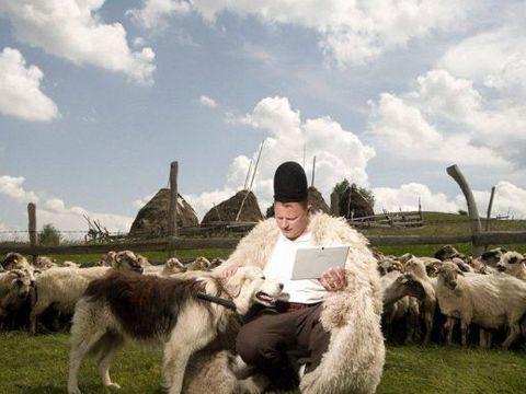 Ghita Ciobanul a dat cu subsemnatul in fata procurorilor! Oierul din reclame... reclama o frauda de milioane de euro in agricultura