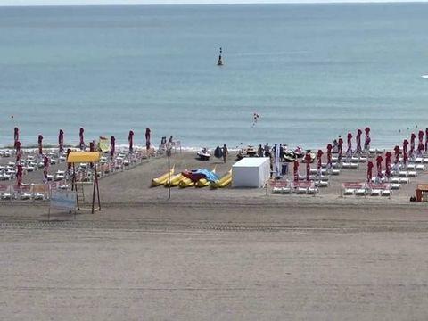 Turistii care faceau plaja in Eforie au fost socati cand valurile au adus la mal cadavrul unui delfin