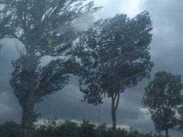 Alerta meteo de furtuni si ploi torentiale in minivacanta de Sfanta Maria!