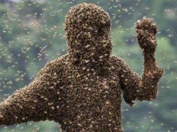 Un roman a murit dupa ce a fost atacat de albine!
