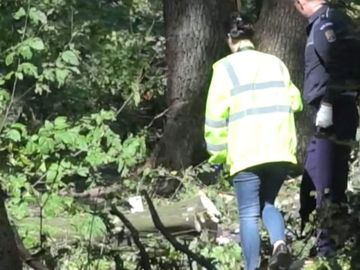 Tanar din Suceava a murit dupa ce un copac a cazut peste el! Urma sa-si boteze copilul peste doua saptamani