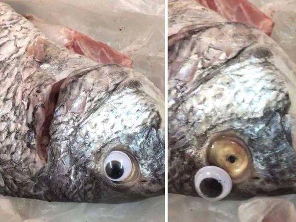 """Afacerea miroase dubios: Peşte putred, """"împrospătat"""" cu ochi de plastic"""