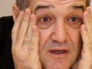 Gigi Becali e băgat în faliment de serele cu legume! Afaceristul a investit 40 de milioane de euro în afacere, dar datoriile au ajuns la 9 milioane de euro EXCLUSIV