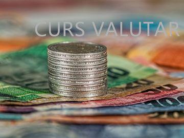 Curs valutar 8 noiembrie. Cursul BNR: cum este cotat Leul fata de Euro