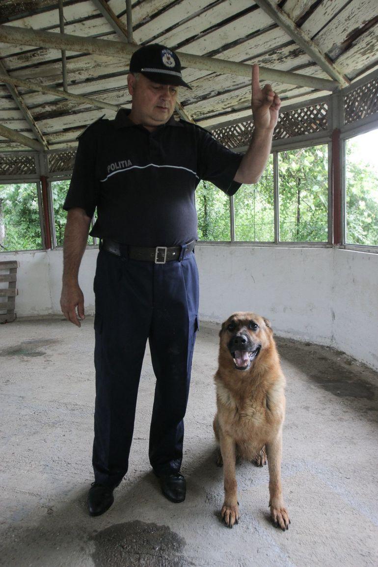 Povestea lui Toby, câinele care a dat de hainele Elodiei Ghinescu aruncate într-o râpă din Braşov!
