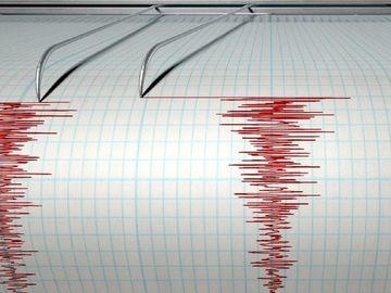 Cutremur în Buzău, în urmă cu puţin timp! Câte grade a avut seismul