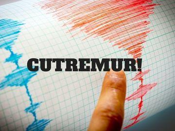 Cutremur în Vrancea, în prima zi a anului! Ce magnitudine a avut