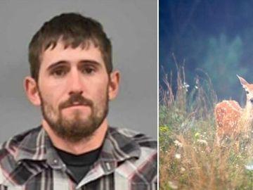 """Un bărbat, condamnat să vizioneze """"Bambi"""" cât timp stă în închisoare"""