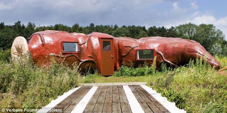 Tu ai putea sa locuiesti aici? Uite cum arata un hotel in forma de intestin!