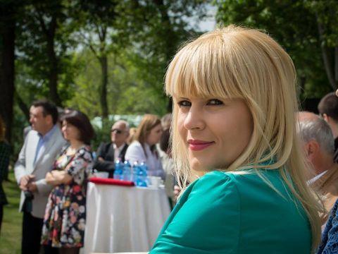 Elena Udrea iese la atac! Ce a cerut fostul ministru prin avocatul său