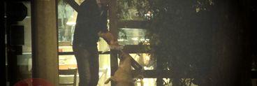 Dupa despartirea de Dinamo, Dario Bonetti a avut parte de o intalnire emotionanta cu cainii. A baut bere pana dupa miezul noptii si a petrecut minute intregi alaturi de niste maidanezi