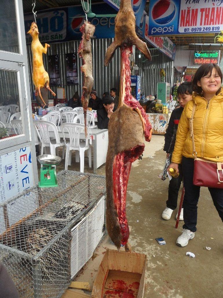 Imagini socante! Nu te uita daca ai stomacul sensibil! Asa arata o macelarie din Vietnam!