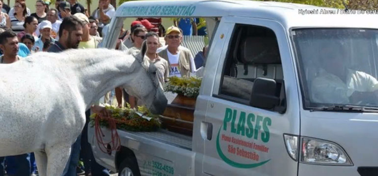 Imagini sfâșietoare de la înmormântare! Un bărbat a murit în accident de mașină, iar calul lui a jelit pe sicriu