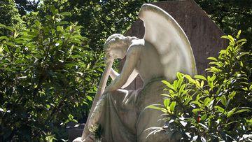 Descoperire macabră în Parcul Herăstrău din Capitală: Un consilier parlamentar, găsit mort