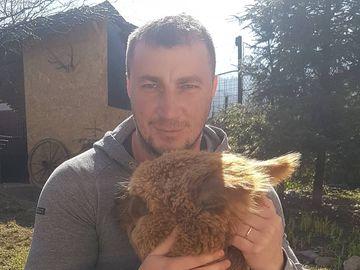 Ce riscă Marian Godină, după ce și-a plimbat alpaca cu autobuzul