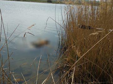 O persoană a fost găsită decedată în Canalul Dunăre - Marea Neagră!