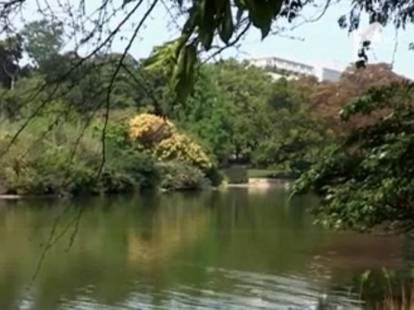 """Panoul din Vaslui care face înconjurul internetului! Un bărbat este disperat că oamenii fac sex oral pe lacurile lui, iar prezervativele plutesc pe apă! """"Fetelor, dacă o au mică…"""""""