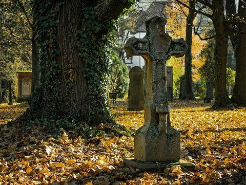 """A intrat într-un cimitir din Buzău să aprindă o lumânare și a încremenit! Ce a găsit printre morminte:""""Este ireal"""""""