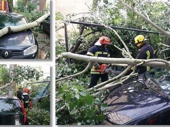 Furtună devastatoare la Timișoara! Acoperișuri, fire de curent și copaci, smulși! E COD GALBEN în jumătate de țară