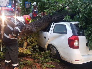 Imaginile dezastrului după furtună! Copaci căzuți în țară și în București! Doi răniți în Capitală!