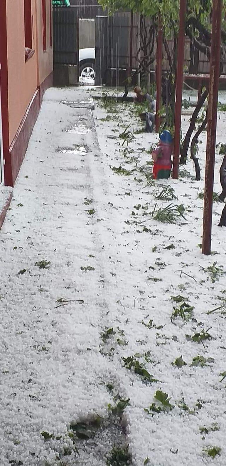 Grindina a făcut prăpăd în Tulcea! Imagini incredibile filmate în urmă cu puțin timp