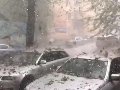 """Imagini apocaliptice cu furtuna violentă din Sălaj, după codul roșu de grindină. A plouat cu """"pietre"""" din cer. Fenomen bizar surprins pe camerele video"""