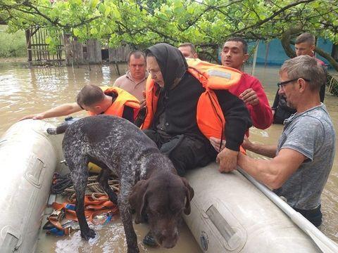 Dezastru făcut de inundații în Timiș! Imagini cutremurătoare! Zeci de gospodării distruse și oameni evacuați FOTO
