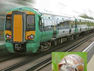 Nu e glumă! Autoritățile au acuzat un MELC pentru un scurtcircuit feroviar care a afectat 12.000 de pasageri