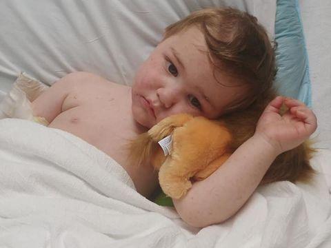 Copil de doi ani, în comă după ce a fost mușcat de o căpușă! Ce boală gravă a făcut