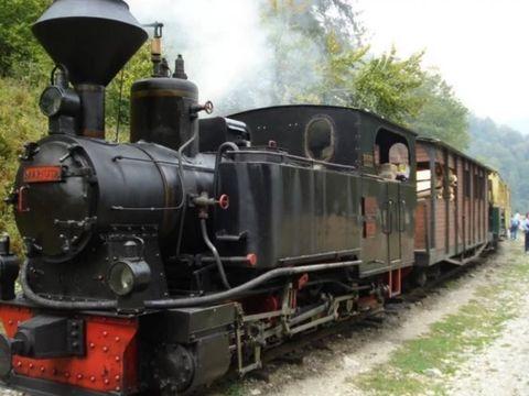 Intervenţie pe Valea Vaserului, după ce un vagon al Mocăniţei a deraiat din nou