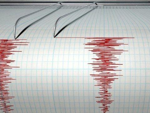 Cutremur în Vrancea în această dimineață. Câte grade a avut seismul