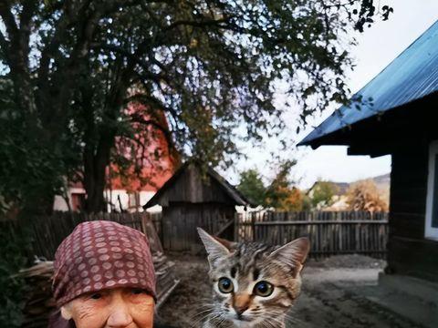 Povestea fotografiei virale care a sensibilizat tot internetul. Bunicuța din Bucovina care ține în mână o pisică a strâns sute de aprecieri