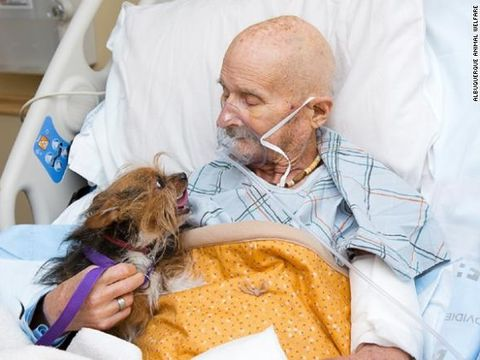 Ultima dorință a unui bărbat aflat pe patul de moarte! A vrut să-și mai vadă câinele încă o dată, iar ce s-a întâmplat după este sfâșietor