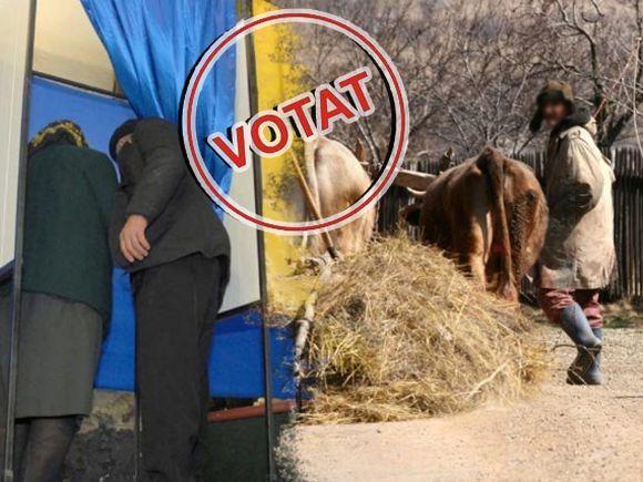 Votul la țară, experiență românească! Ce explicație oferă președintele unei secții de votare din Giurgiu, după ce două persoane au intrat în aceeași cabină să voteze