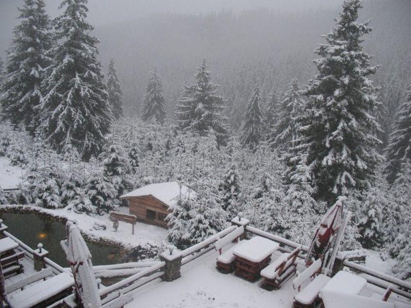 Avertizare de vreme rea: ninsori și vânt puternic în mai multe zone