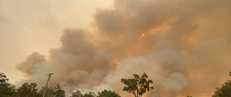 Incendii devastatoare în Australia! Apelul disperat: