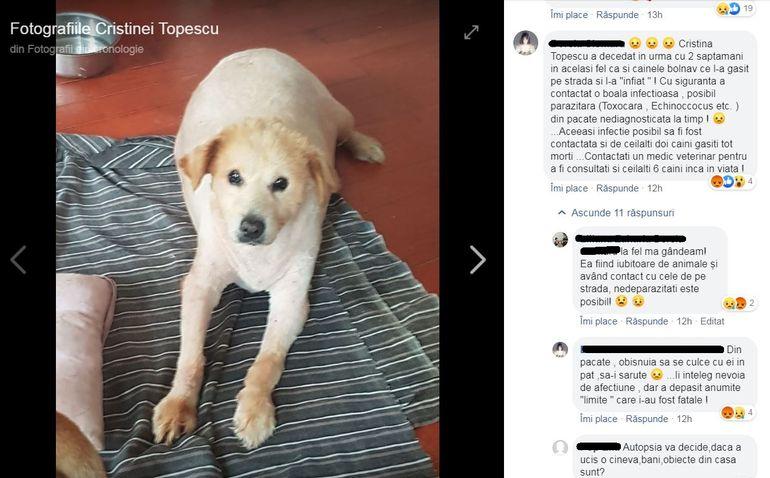 """Ipoteza halucinantă privind moartea Cristinei Țopescu """"A murit la fel ca și câinele ei bolnav,  găsit pe stradă"""""""