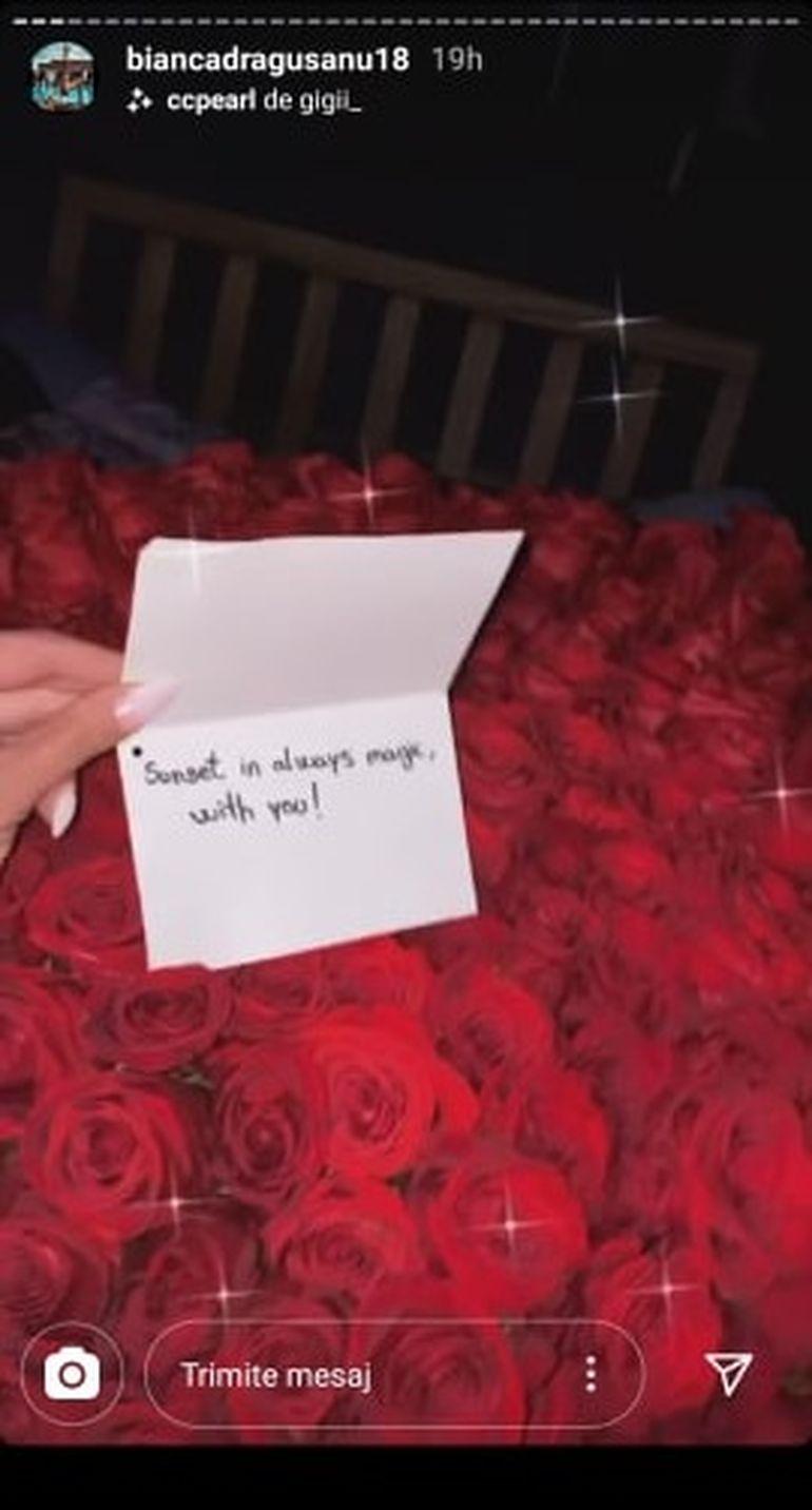 Bianca Drăgușanu a primit un alt buchet imens de trandafiri de la Alex Bodi? Reacția ei spune tot!