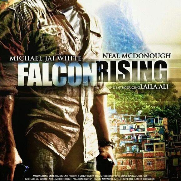 falcon-rising-870934l--crop-1625645475.jpg
