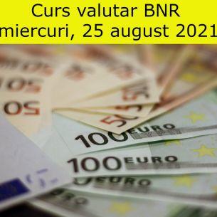 Curs valutar BNR miercuri, 25 august 2021. Euro și dolarul scad! Cele mai noi cotații