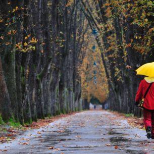 Prognoza meteo ANM duminică, 24 octombrie: Vremea se răcește considerabil în toată țara