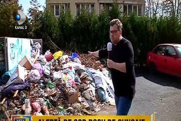 Un oras din Romania se afla sub alerta de cod rosu, de gunoaie! De la o zi la alta, muntii de mizerie cresc odata cu nepasarea autoritatilor! Iata cum arata astazi orasul Orsova, care candva era numit orasul florilor!