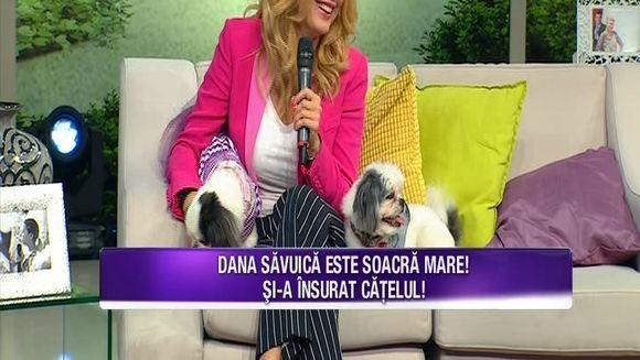 Dana Savuica si Teo Trandafir, testate de Bursucu cu cele mai indiscrete intrebari! Iata cum au raspuns vedetele la cele mai intime intrebari!