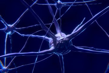 Medici specialisti: Virusul herpetic are legatura cu boala Alzheimer