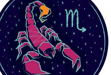 Horoscop 26 octombrie 2018: Fecioarele au o zi excelenta pe plan sentimental, iar Scorpionii trebuie sa ia o decizie